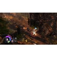 Скриншот Dungeon Siege III