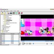 Скриншот Flash Player Pro 4.7