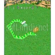 Скриншот Snake 3D (Series 60) 2.6