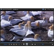 Скриншот PowerDVD Ultra 13.0.3313.58