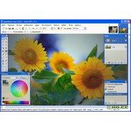 Скриншот Paint.NET 3.5.10