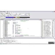 Скриншот IDA Pro 6.5.140124