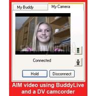 Скриншот WebCamDV 2.1